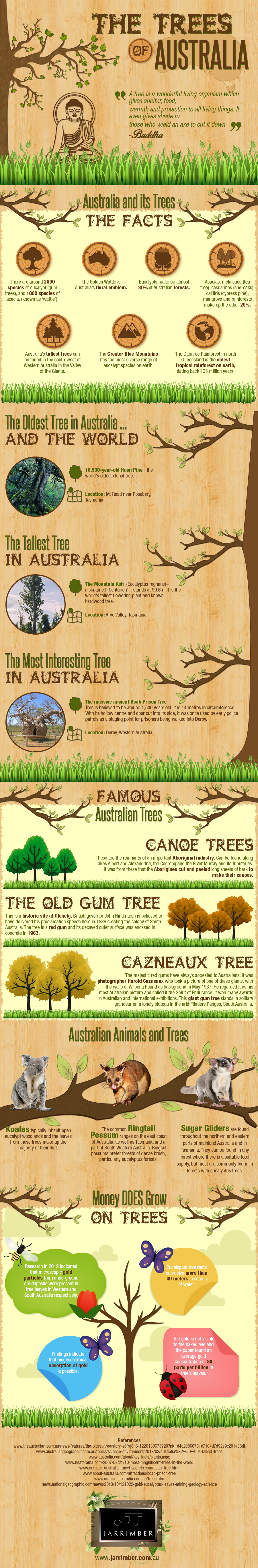 Trees of Australia Infographic